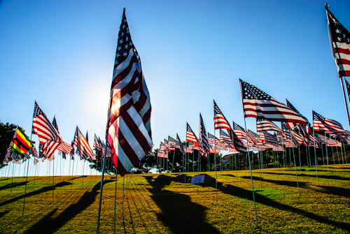 Flags Remembering 9/11